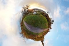 Neckarhalde_1_smallplanet_web